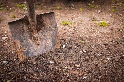 Eliminar las malas hierbas