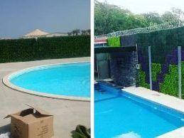 piscina y paredes con césped artificial